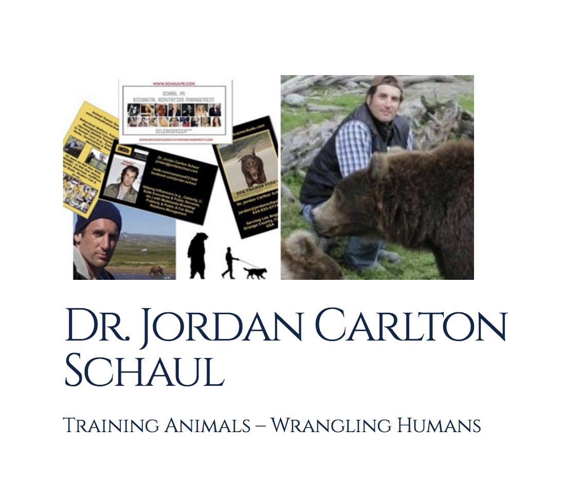 Jordan Schaul